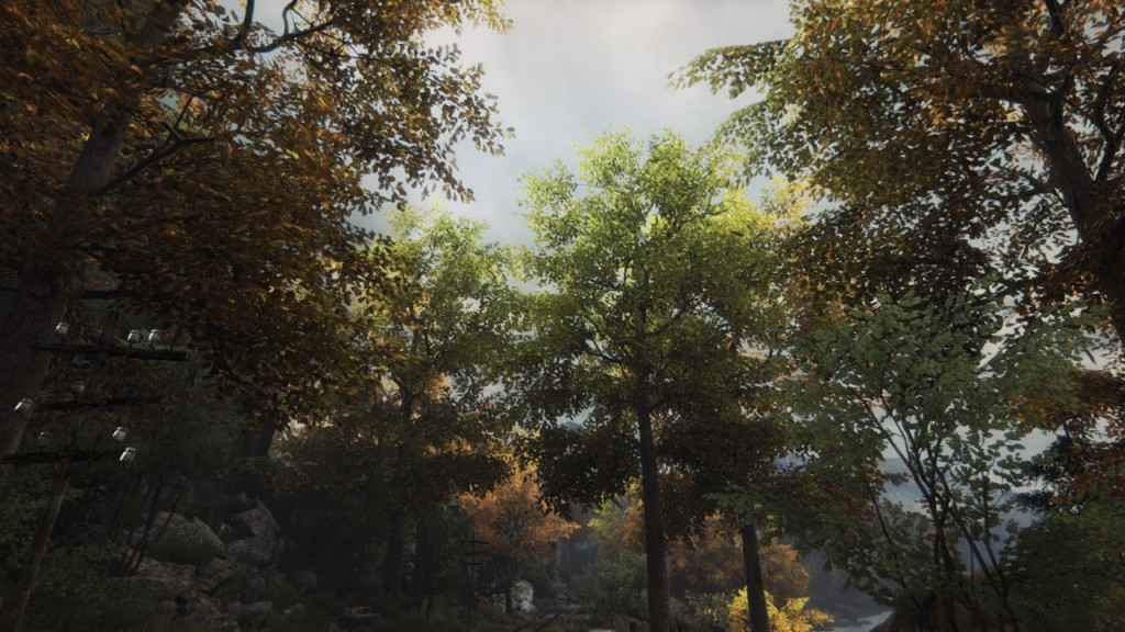 ethan-carter-forest
